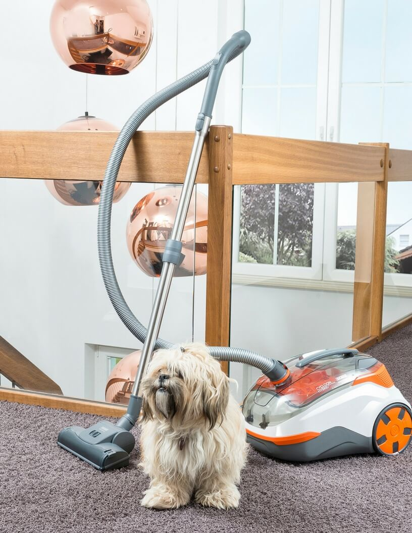 Thomas Stofzuigers - Cycloon Hybrid Pet & Friends met hond